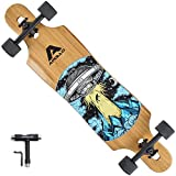 APOLLO Longboard for Professionals and Beginners; Long Board for Kids, Teens and Adults; Freeride Skateboard Cruiser and Downhill Longboards - Nevada